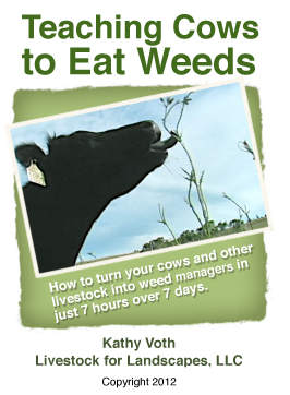 Teaching Cows to Eat Weeds DVD